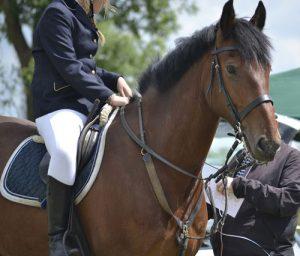 Horse-rider On Horse